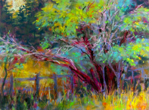 """Trees on Sharpe Rd,"" pastel on Wallis paper, 9 x 12 in"