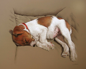 "Pastel Gem - Christine Obers, ""Sweet Dreams (Olive),"" Nupastels, Unison, and pastel pencils on Art Spectrum Colourfix paper, 8 x 10 in,  created for a fundraiser for children's art programmes"