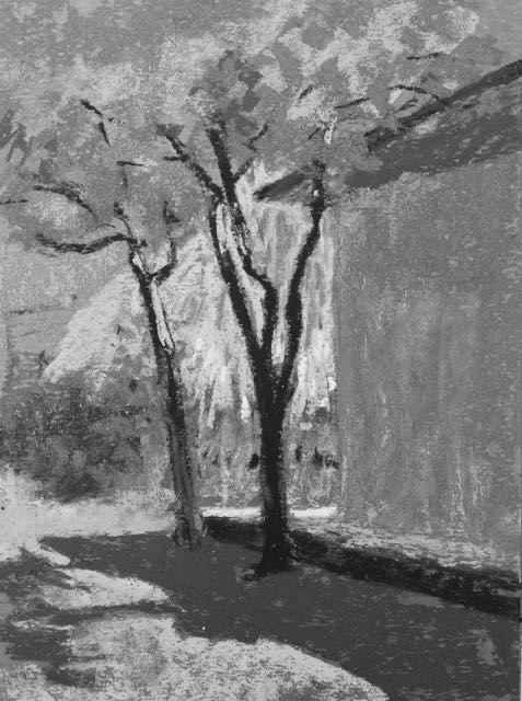 5. Having a look at the plein air pastel in black and white