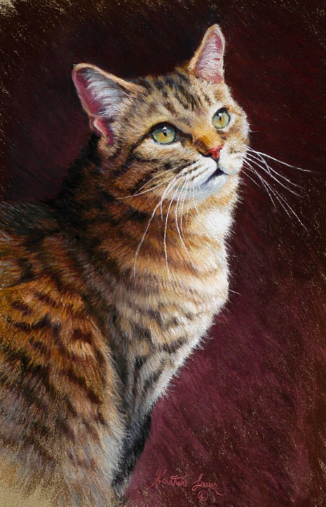"Heather Laws, ""Kramer,"" pastel on Sennelier LaCarte, 16 x 10 in"