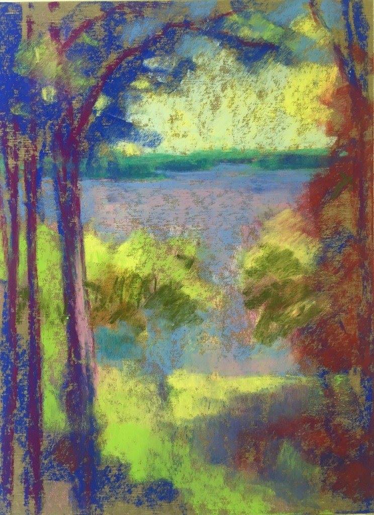 6. Beginning to define the shapes of trees and negative space of the lake in this plein air pastel