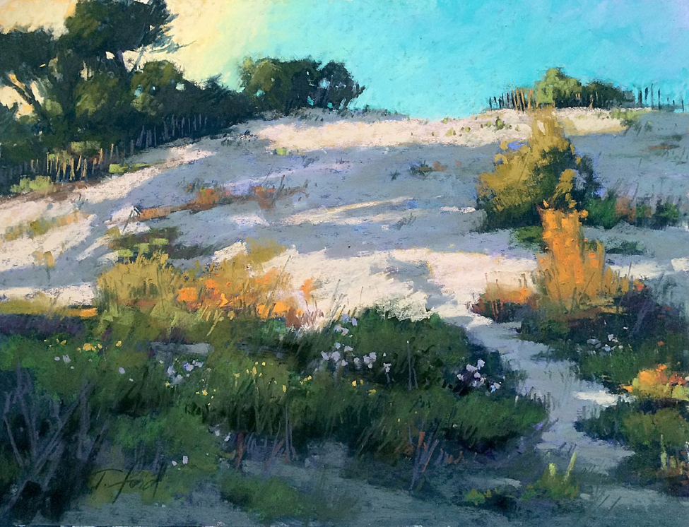 "pastel picks: Terri Ford, ""Dune Shadows,"" pastel, 12 x 16 in,"