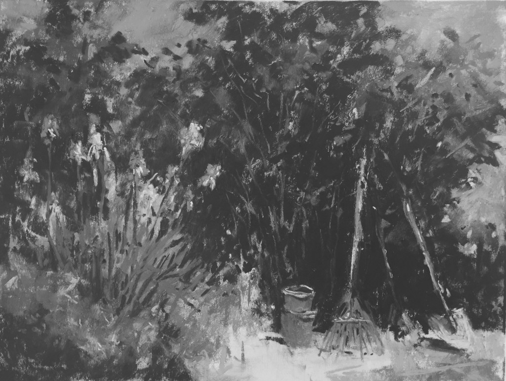 Garden corner: 10a. Looking at the image in black and white , I think it's working quite well.