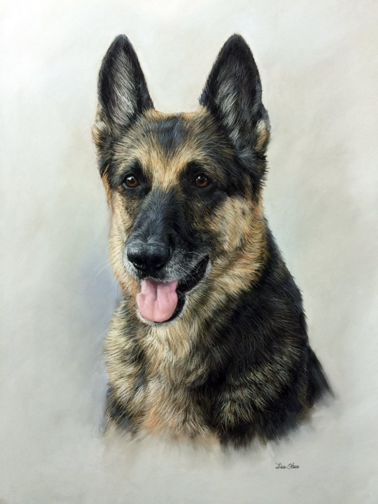 "Lisa Ober, ""German Shepherd,"" pastel on UArt 400, 24 x 18 in ""This piece was a demo piece for one of my workshops on pet portrait painting. I do very short demos followed by lots of class time. I often barely finish my demo but am always amazed by what my students accomplish."""