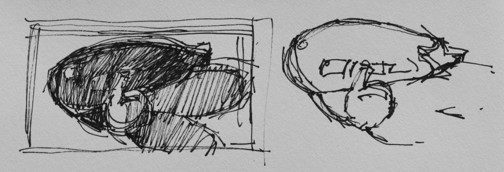 Painting an Eggplant: My thumbnail sketches
