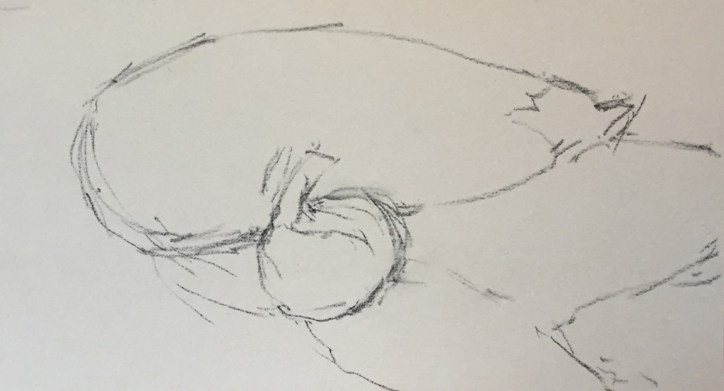Painting an Eggplant - the initial sketch in vine charcoal on UArt 400 grit paper