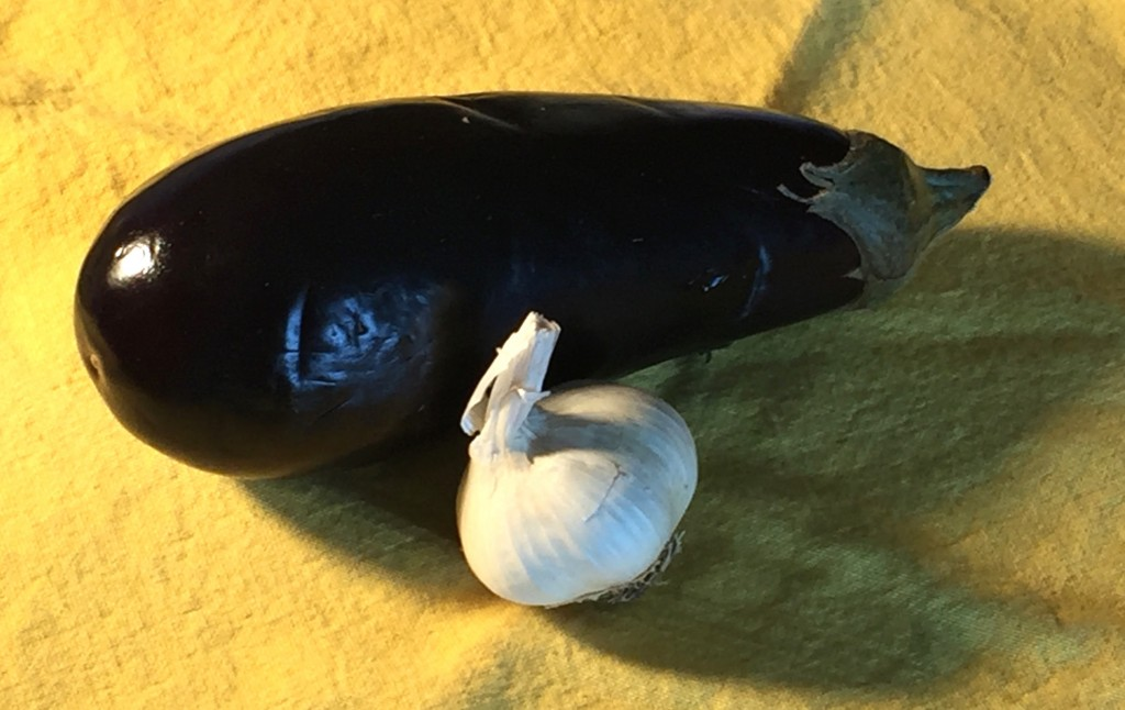 Painting An Eggplant: photo of set-up