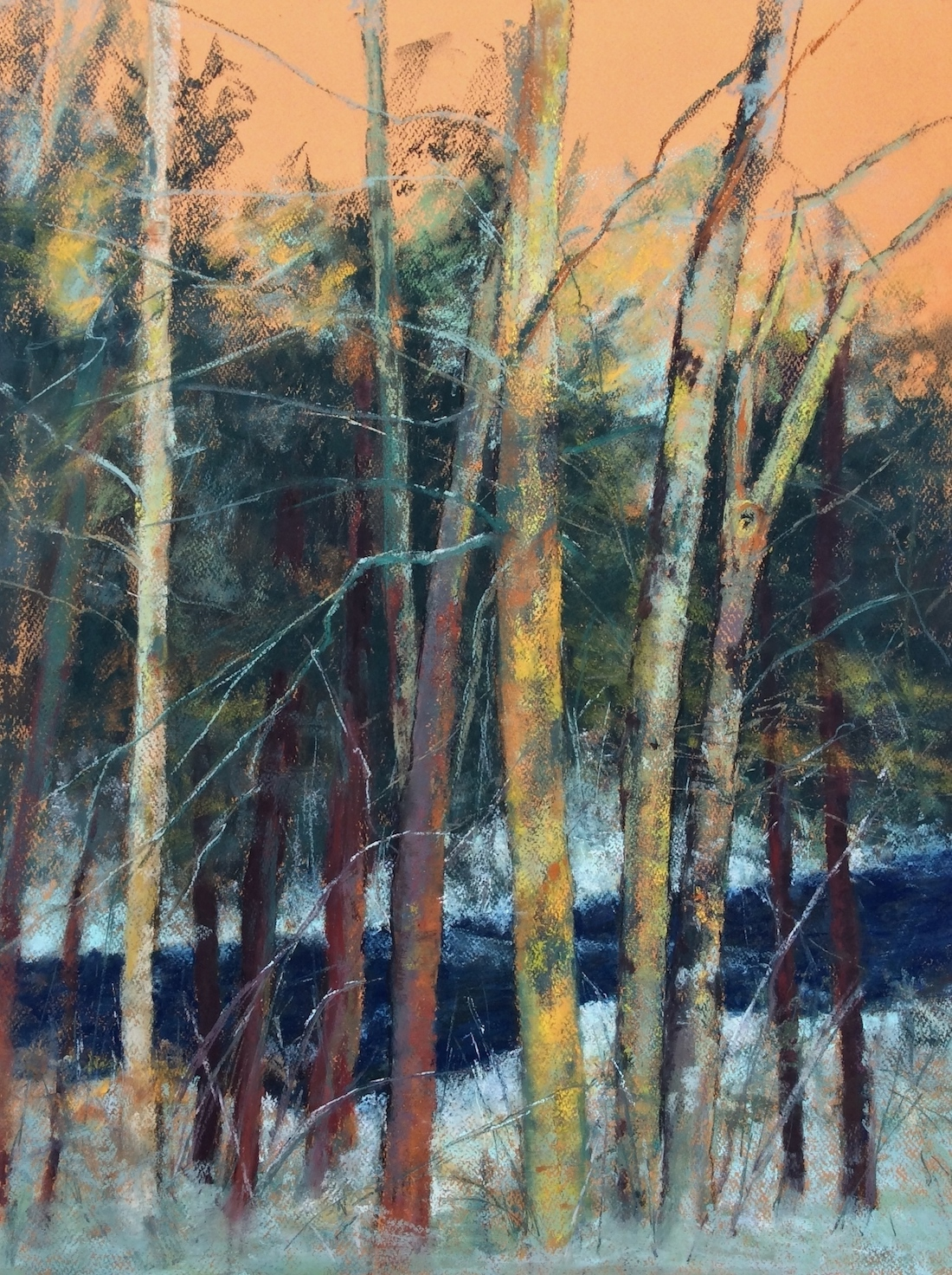 "Maureen Spinale, ""A River Runs Through It,"" pastel on amber toned Canson Mi-Teintes, 29x23 in. I loved how the trees were growing together. I wasn't sure what was in the background, so I thought a river would be nice rambling through the trees."
