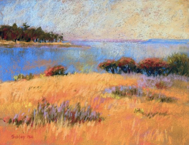 "PSA Feature Artist: Gail Sibley, ""Saturna,"" pastel on Wallis paper, 9 x 12 in"