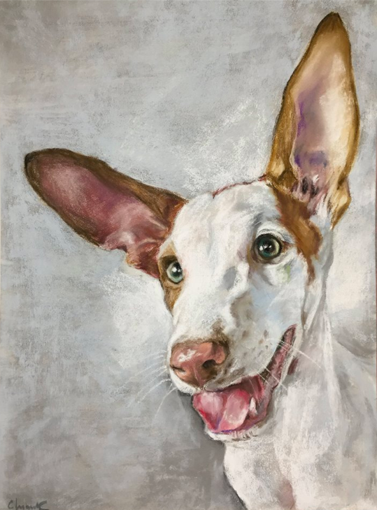 "March's Notable Pastels: Claudia Chimenti, ""Bandito,"" pastel on Pastelmat, 11 7/8 x 7 7/8 in (30 x 20 cm)"
