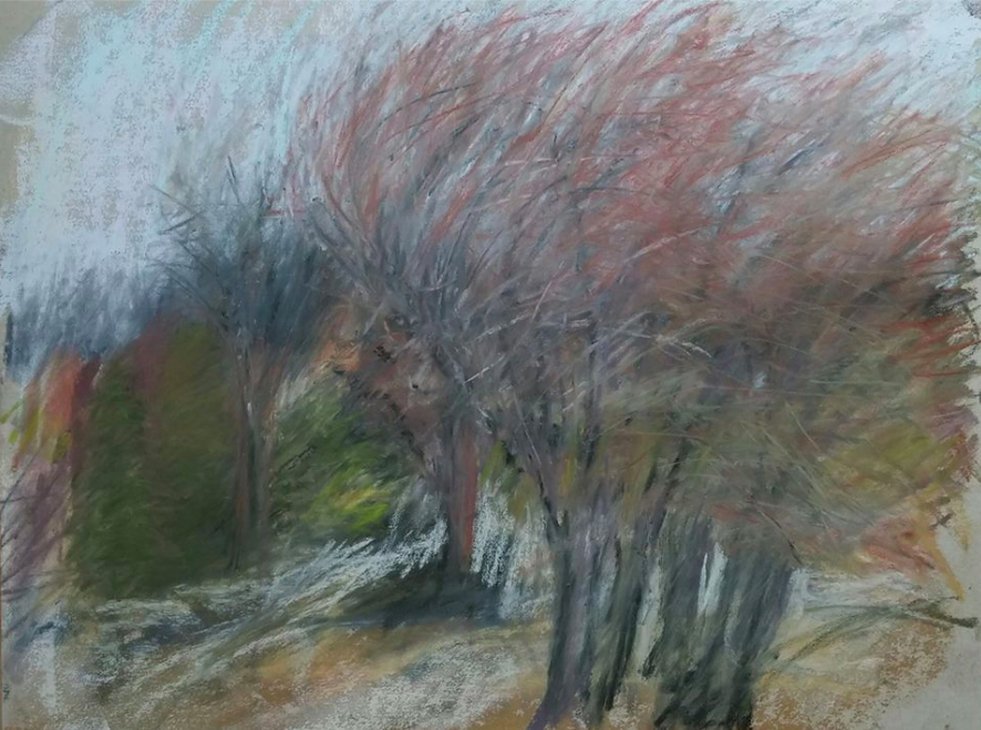 "March's Notable Pastels: Amy Szwaya, ""Willows in March,"" Terry Ludwig pastels on UART paper, 9 x 12 in"