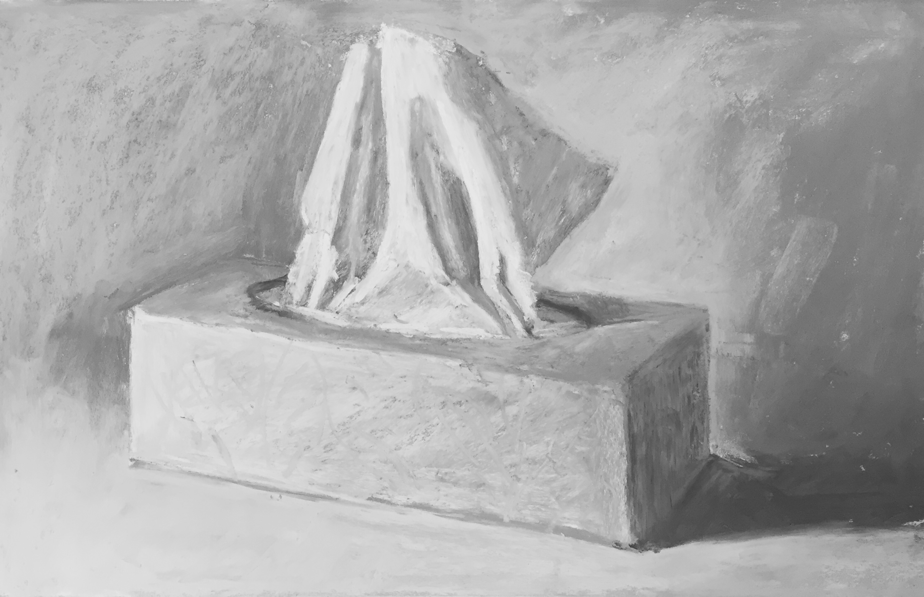 Lack of colour choices: 6b. The black and white version. Gail Sibley, 'Box of Tissues,' Unison pastels on UART 400 paper, 7 3/4 x 12 in.