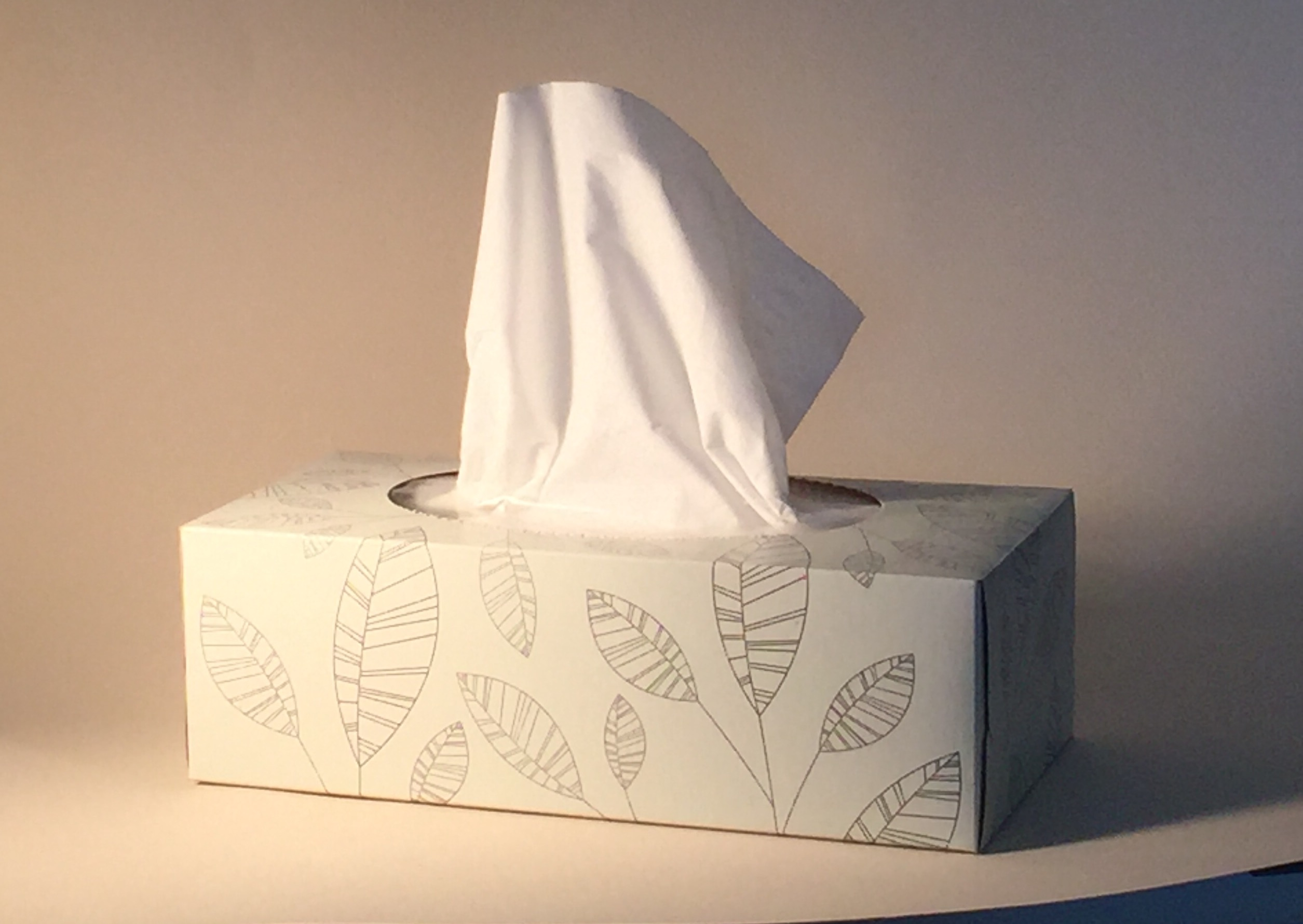 Lack of colour choices: the box of tissues to paint