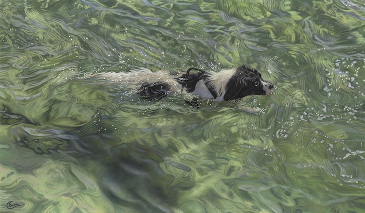 """October's outstanding pastels: Emma Colbert, """"Dogged Determination,"""" pastel, 16 x 27 in"""