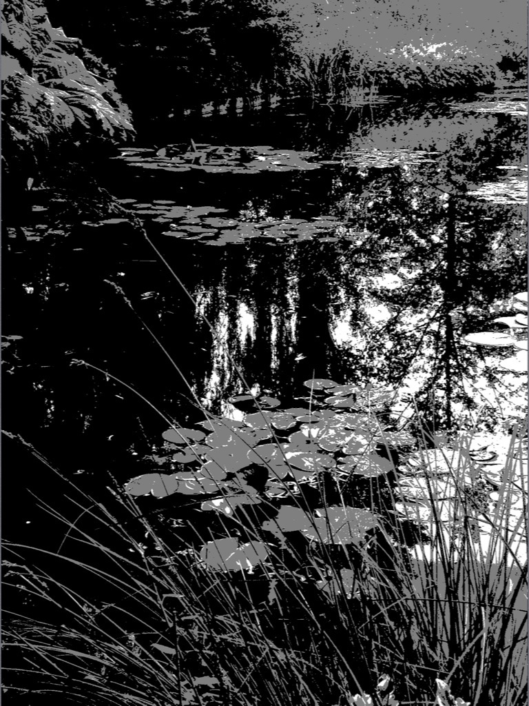 Marcia Holmes, Pond Impression Value Viewer No Tan Source: I later found I had evaluated this scene with a new App.