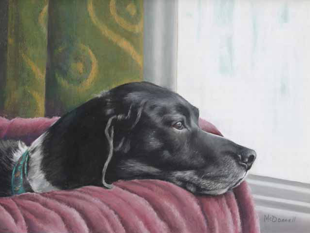 """January's Striking Pastels: Donna McDonnell, """"Wags,"""" pastel, 9 x 12 in"""