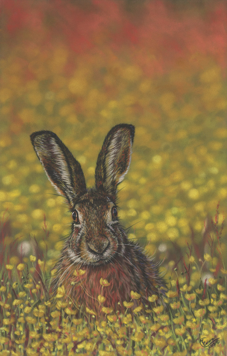 "Emma Colbert, ""Bathing in Buttercups,"" 2013, Unison pastels on Hahnemühle velour paper, 19 x 13 in. Sold. Created from several of my own photos when trying to break into using more vibrant colours."