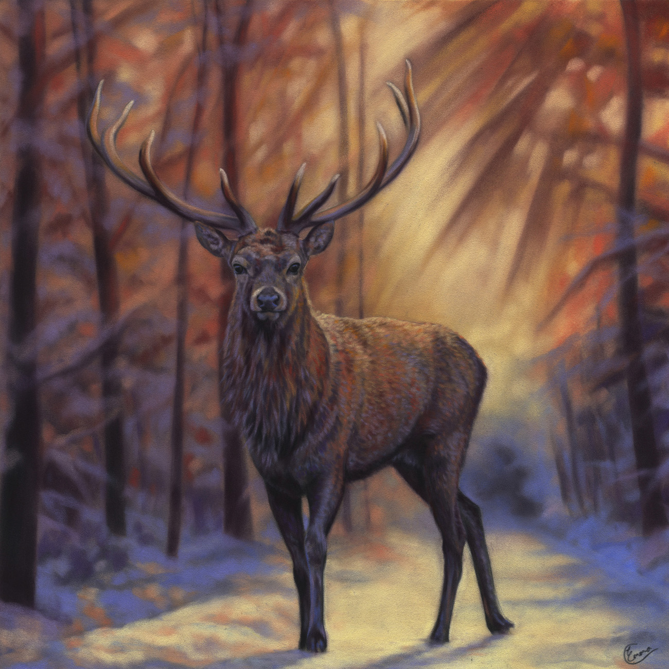 "Emma Colbert, ""Brave Hart,"" 2016, Unison pastels on Hahnemühle velour paper, 19 x 19 in. Sold. Painted as part of a series of red deer from Gosford Park in Northern Ireland."