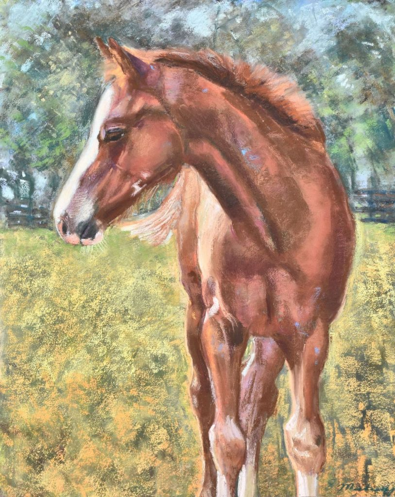 Painting Horses Three Artists Share Work And Process On How To Pastel